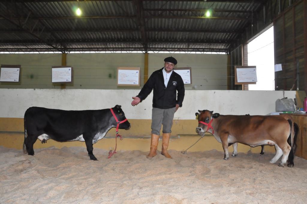 ExpoLages - Notícias - Mini Vacas são atrações para crianças na ... 3d83d5aad38