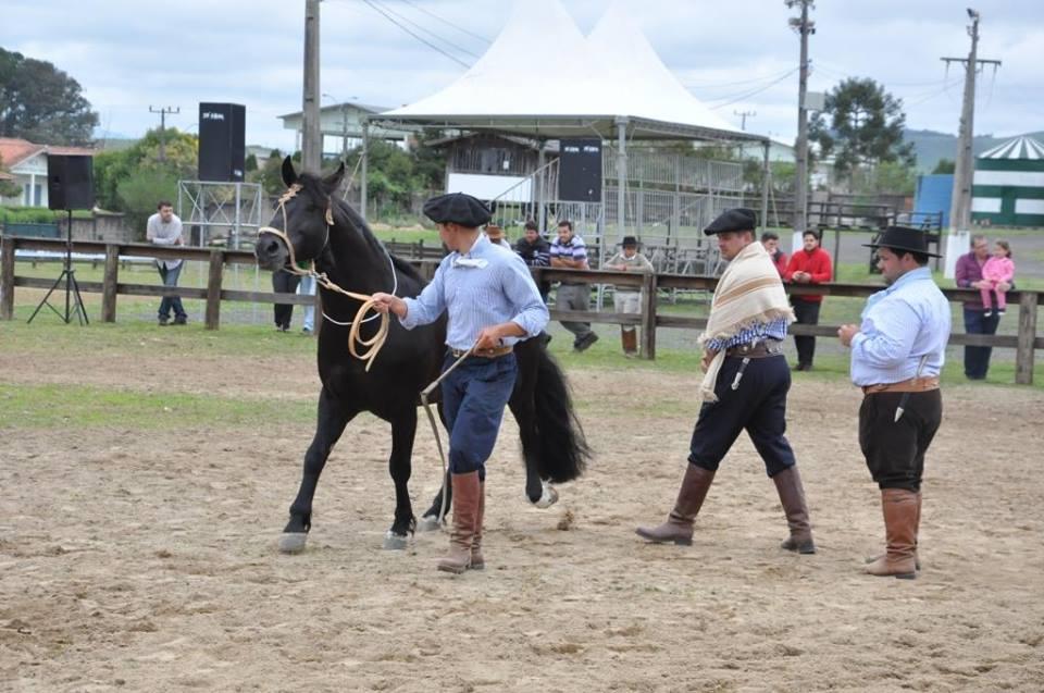 Encerrou neste sábado(14 10) o julgamento morfológico de cavalo crioulo  realizado na Expolages 2016. Andre Narciso Rosa 7fbdac7407a